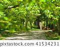 ผู้หญิงคนหนึ่งเดินบนหมาที่สวนสาธารณะสีเขียวสด Bergian Shepherd 41534231