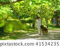 ผู้หญิงคนหนึ่งเดินบนหมาที่สวนสาธารณะสีเขียวสด Bergian Shepherd 41534235