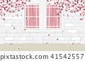 white wall and windows with cherry blossom flowers 41542557