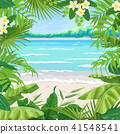 Summer Background with Tropical Frame on Sea Coast 41548541