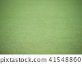 잔디밭, 잔디, 녹색 41548860
