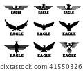 eagle, logo, vector 41550326
