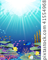 Landscape in the sea Coral reef coral reef 41554968