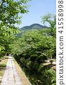 國會山和新鮮綠色(京都·日本)附近的疏水銀閣寺 41558998