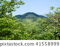 靠近首都金閣寺的清新綠色之路(京都·日本) 41558999