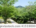 國會山和新鮮綠色(京都·日本)附近的疏水銀閣寺 41559000