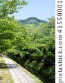 國會山和新鮮綠色(京都·日本)附近的疏水銀閣寺 41559001