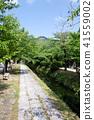 國會山和新鮮綠色(京都·日本)附近的疏水銀閣寺 41559002