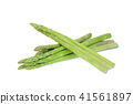 asparagus vegetable isolated on white background 41561897