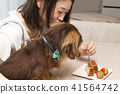 迷你臘腸犬和雌性 41564742