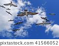 野生鸟类 野鸟 水禽 41566052