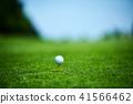 高爾夫球 41566462