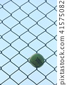 테니스 공 41575082