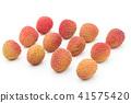 Lychee: lychee (litchi) 41575420