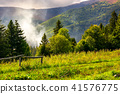 mountain, forest, background 41576775