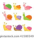 snail vector collection design 41580349
