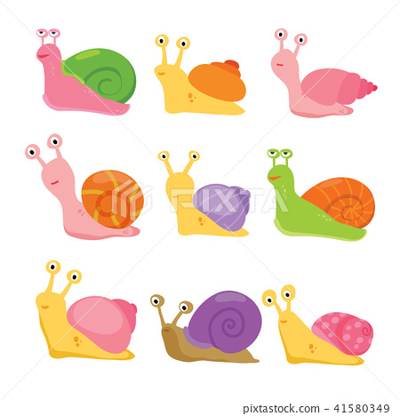 snail vector collection design 41580349