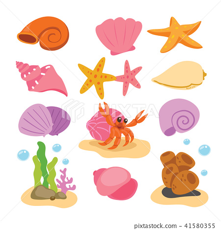 shell vector collection design 41580355