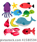 Sea animals collection 41580594