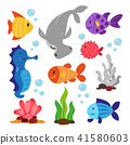Sea animals collection 41580603