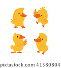 duck vector character design 41580804