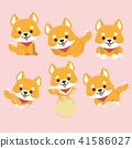 Shiba Inu Dog Cartoon Set Vector. 41586027