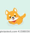 Vector illustration of cute Shiba Inu dog.  41586036
