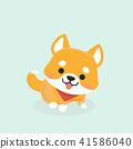 Vector illustration of cute Shiba Inu dog.  41586040