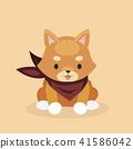 Vector illustration of cute Shiba Inu dog.  41586042