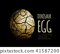 Egg of a dinosaur on a black background. Realistic vector illustration 41587200