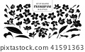 Set of isolated silhouette frangipani. 41591363