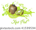 Kiwi on splash water , juices,fresh ,vector  41599594