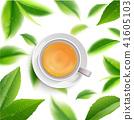 ชา,สีเขียว,เขียว 41605103