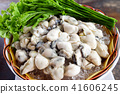 Fresh oysters on ice with acacia in a bowl 41606245