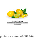 lemon fruit on white background, healthy lifestyle or diet concept, logo for fresh fruits copy space 41606344
