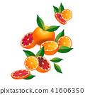 orange fruit on white background, healthy lifestyle or diet concept, logo for fresh fruits 41606350