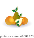 pear fruit on white background, healthy lifestyle or diet concept, logo for fresh fruits 41606373