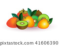 melon apple fruit on white background, healthy lifestyle or diet concept, logo for fresh fruits 41606390