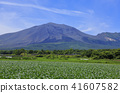 mount asama, cabbage, cabbages 41607582