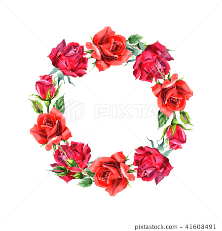 Red hybrid rose. Floral botanical flower.Frame border ornament square. 41608491