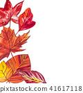 autumn leaf watercolor 41617118