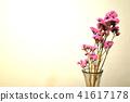스타찌스 41617178