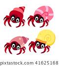 hermit crab character design 41625168