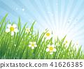 牧场 春天 春 41626385