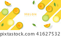 Fresh melon fruit background in paper art style 41627532