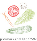 Hand drawn sketch style vegetables set. 41627592