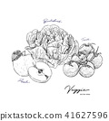 Set of Vegetables and fruit, sketch vector. 41627596