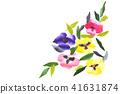 三色堇 花朵 花 41631874