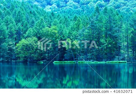 신록 하나님 射鹿 연못 41632071