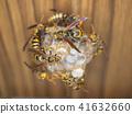 紙黃蜂 蜜蜂 嵌套 41632660
